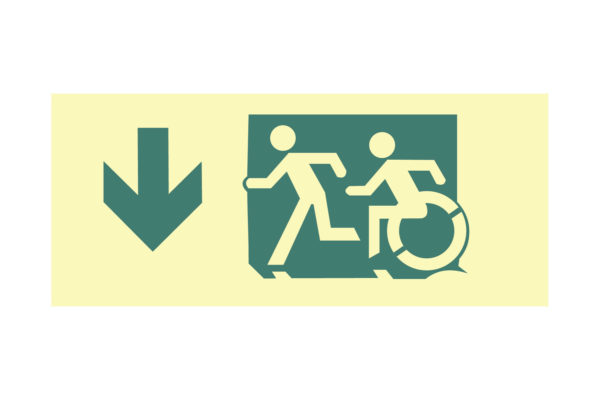 12″ x 5″ Public & Handicapped Access Facing Left Directing Down